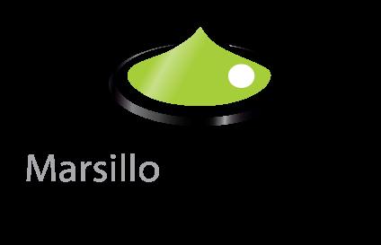 Marsillo Consulting